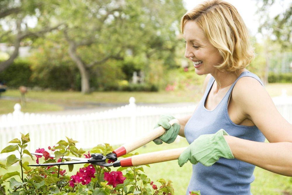 Gardening - Use 1200x800.jpg