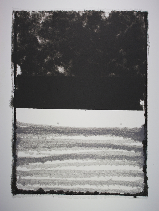 Black, White and Silver 3, Monoprint on Handmade Paper, 29 x 21