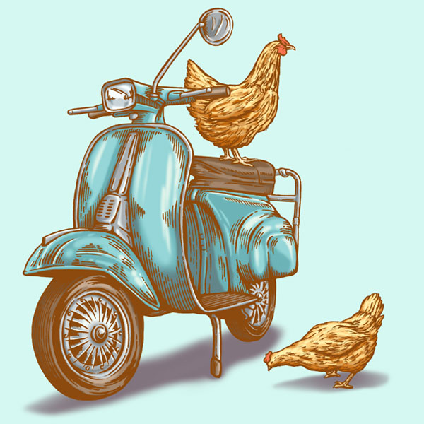 cluck-n-scoot