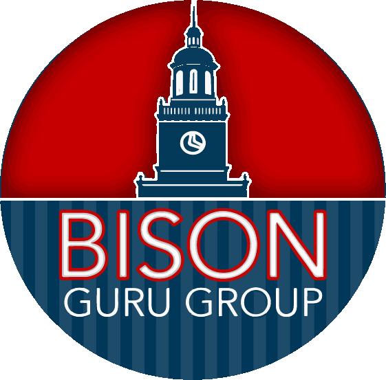 Bison Guru Group logo
