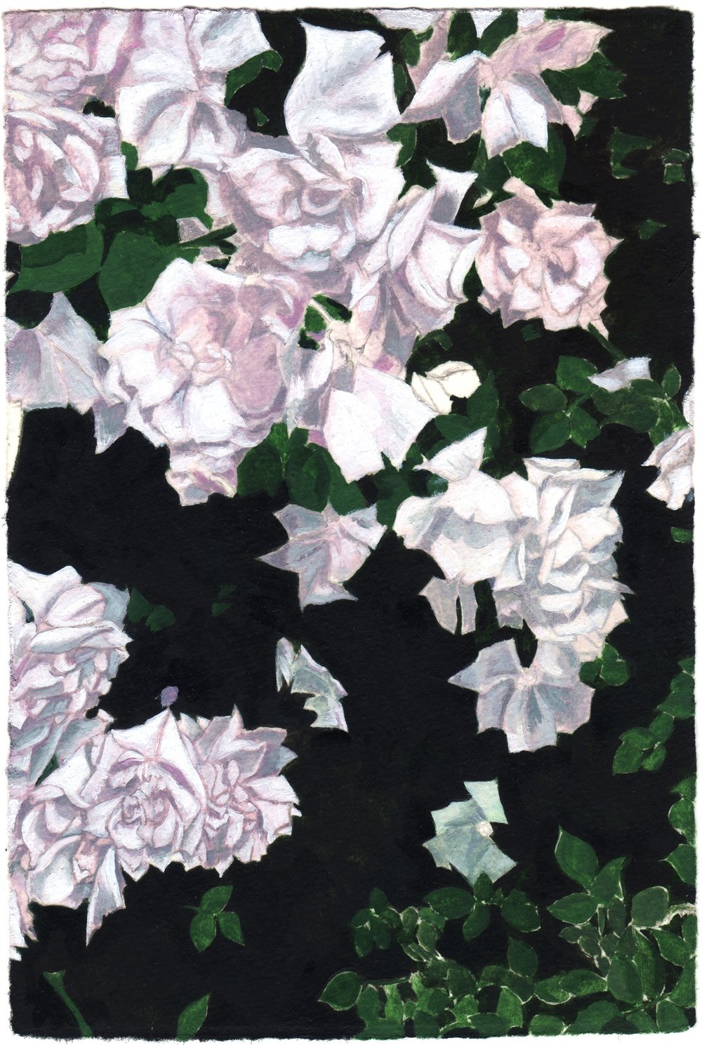"""Tamed Flora"""