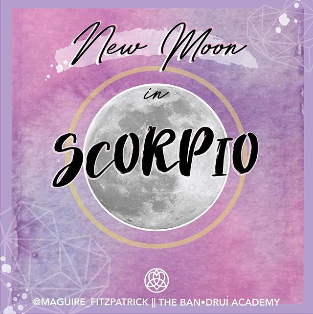 Tonight is the full moon in Scorpio! ✨🌙🌚 Be sure to spend at least some time with yourself to dig into yourself deeply. Take time to really honor yourself and connect! There's a lot within your subconscious energy that your conscious mind needs to become aware of, so that you can release it. 🙏🏼✨ So be sure tonight or tomorrow to move into the energy of the New Moon, and reflect, and have a fuller conversation with yourself. 💗 For more info, see my IGTV vid and watch my fuller video on YouTube! 💕 click link in bio! ❌🌙❌