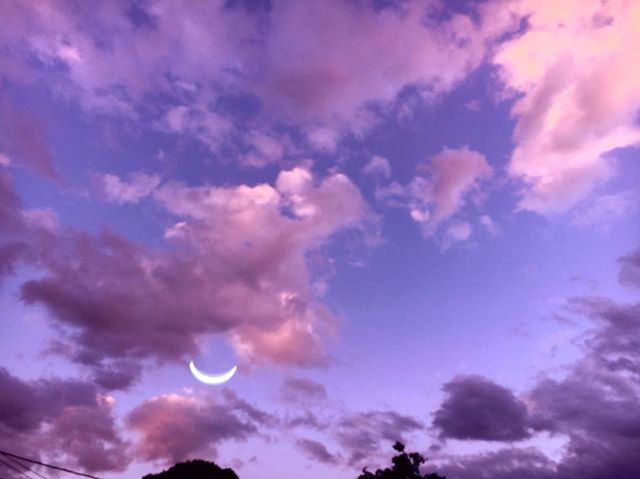 ✨🌙 Are you feeling the high vibes of Sagittarius season, so far? Did you set your intentions at the New Moon? It's not too late! Today also holds powerful new moon energy. 🏹🌑 . Now is the time to get super clear on where you want to expand in your life, what adventures your heart longs for, and what vision you hold for your future! And to put it into writing!! 📖🖋Sagittarius tells you that all you dream of is possible!! ♐️💕 .  If you want to know more about Sag energy + setting intentions at the New Moon, I have a video on that and more! Click the link in bio for super high vibes on December's Astro Energy! ✨🌙