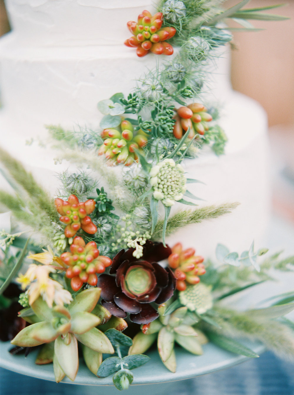 Succulent cake-Petal Atelier-Wine Country Wedding-Wedding Cake-Cake Bloom-Emily March Payne Photography