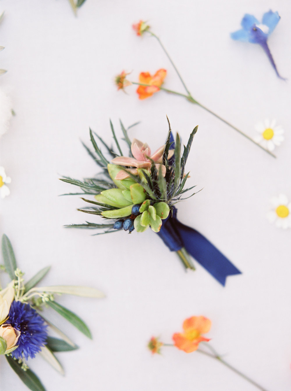 Blue boutonniere-petal atelier-thistle-succulents-emily march payne photography