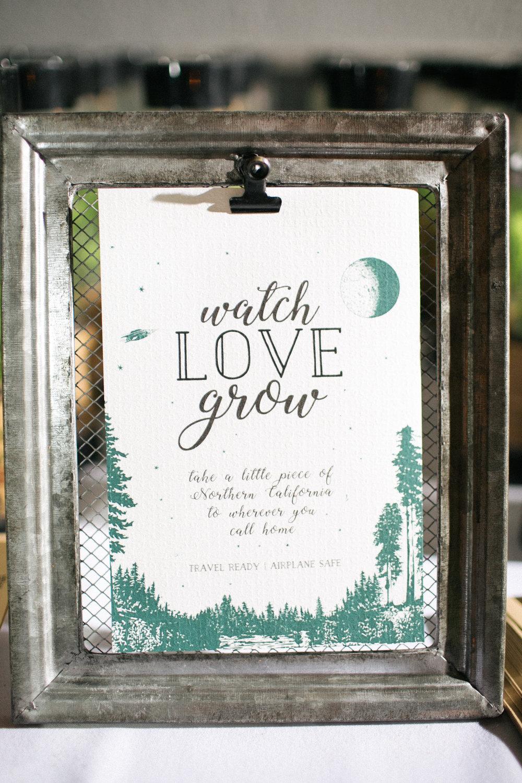 BRIT_WILL _wedding under the redwoods