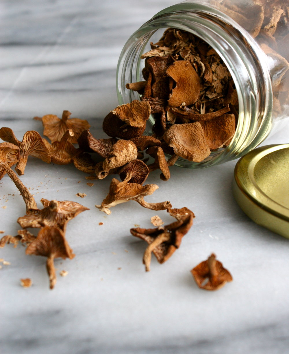 Candy Cap Mushroom Recipe Ideas - dried candy cap mushroom image