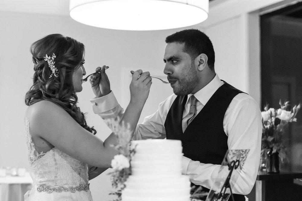 Cake Cutting - Ariel + Amr - Mt Tam Wedding | Cake Bloom, Sonoma, California | Jillian Gorman Photography