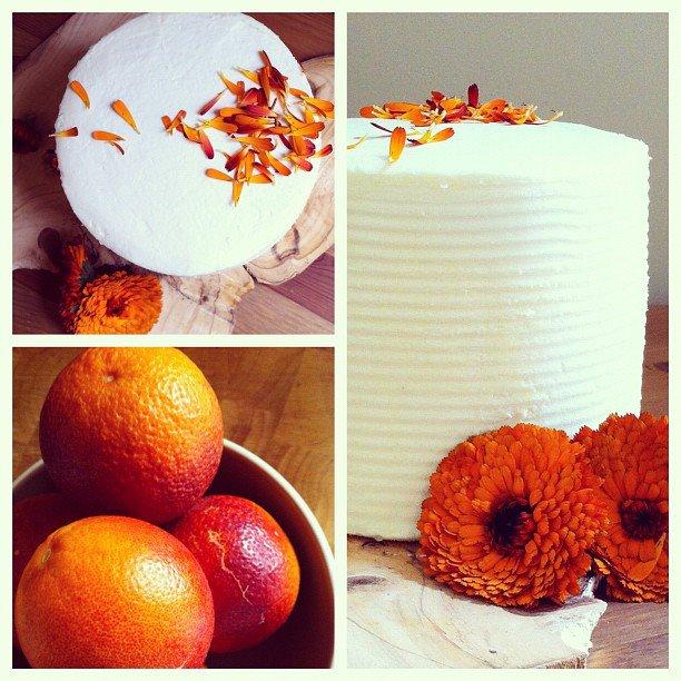 calendula cake