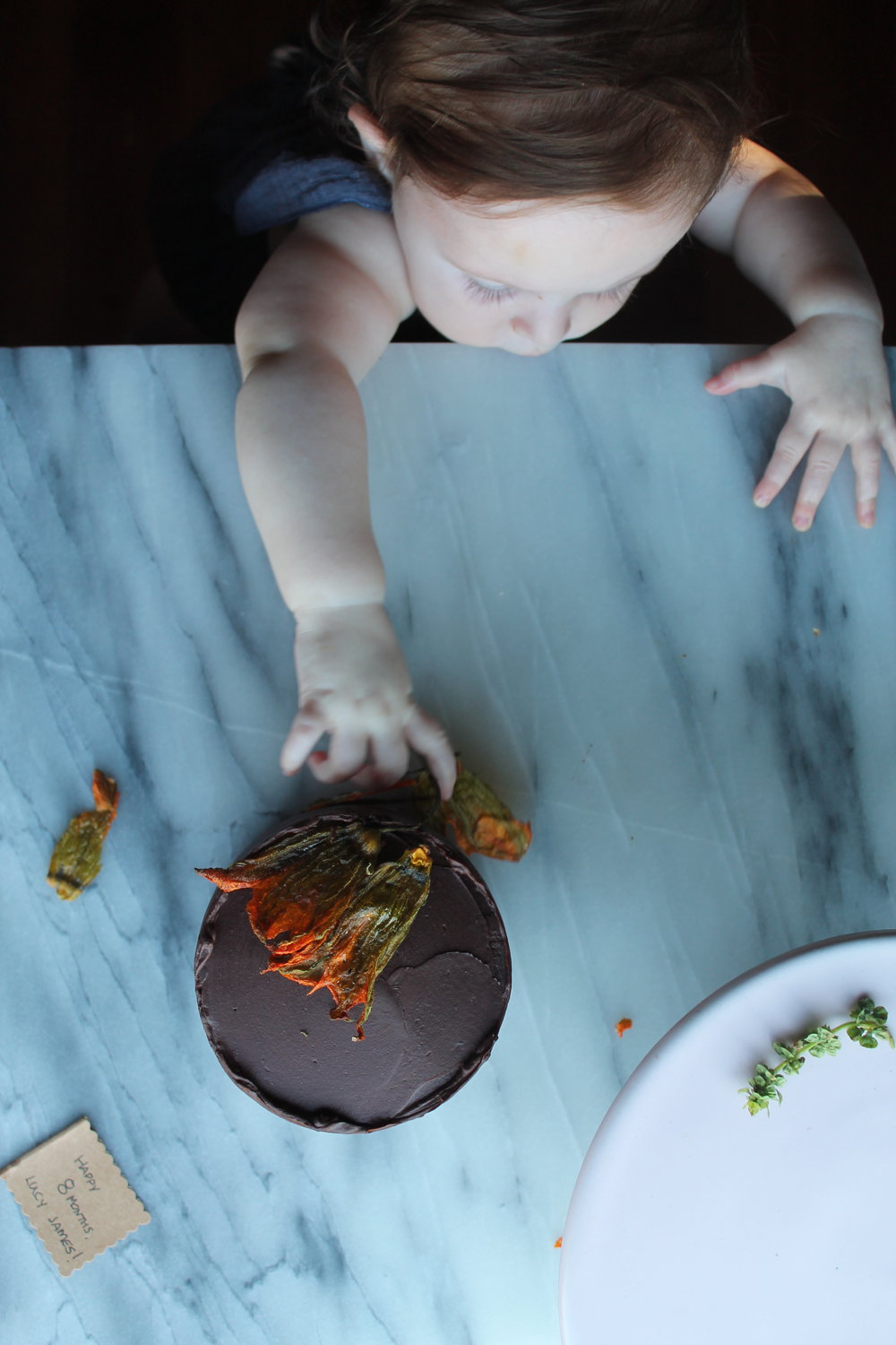 Chocolate Zucchini Baby Cake Idea for Baby's First Birthday