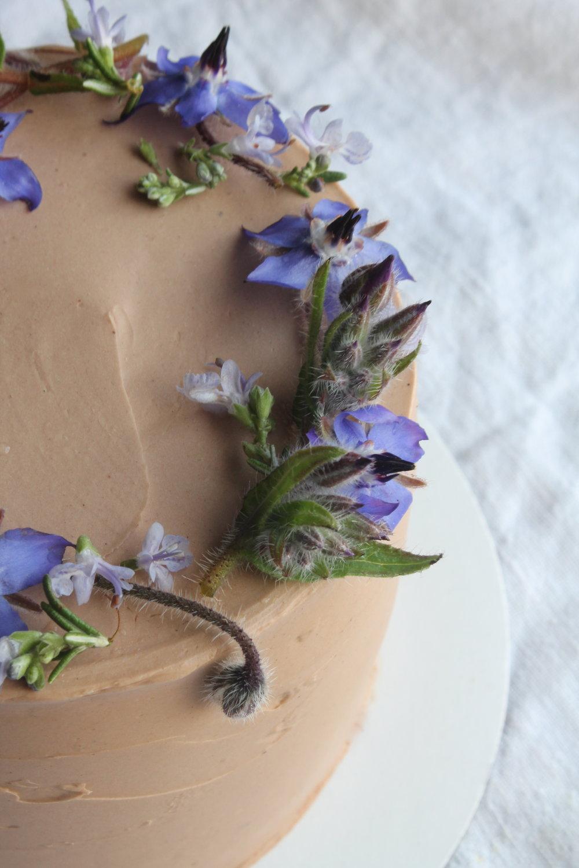 Chocolate mocha cake with borage and rosemary flower