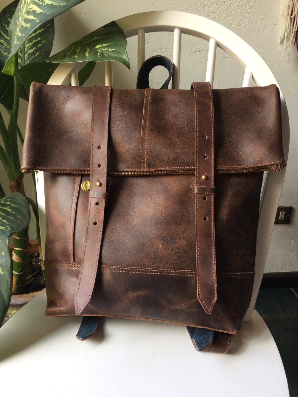 Castaño brown with blue leather detailing