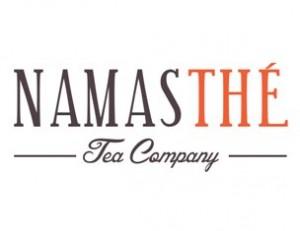 NAMASTHE-logo-2014-email-large-300x231.jpg