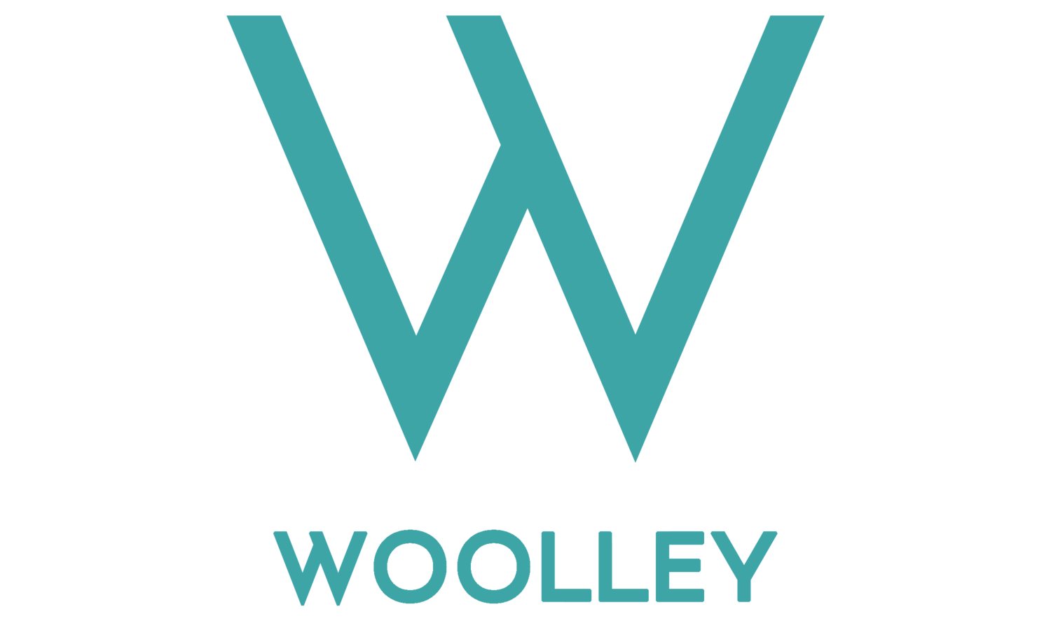 Woolley Photography - Award Winning Wedding Photographers