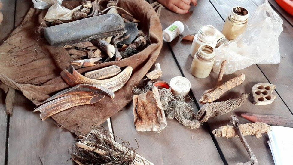 Shan traditional medicine products gathered from the forest (Wah, 2017)