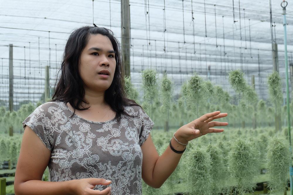 Khun Nantha, leader of organic products from Khlong yong social enterprise