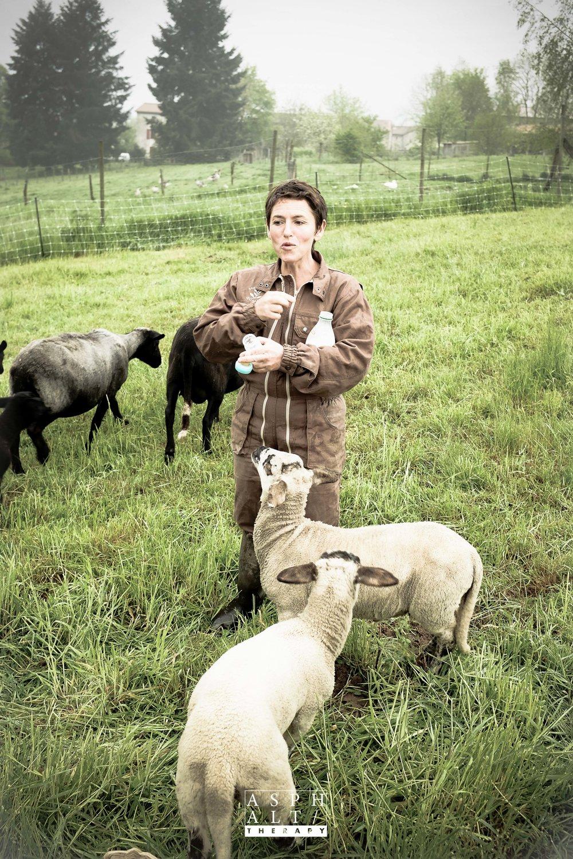Il n'y a pas que des volailles à la ferme de Florence...