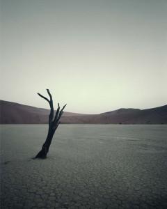 IV 474 Dead Vlei, Sossusvlei Namibia, 2011