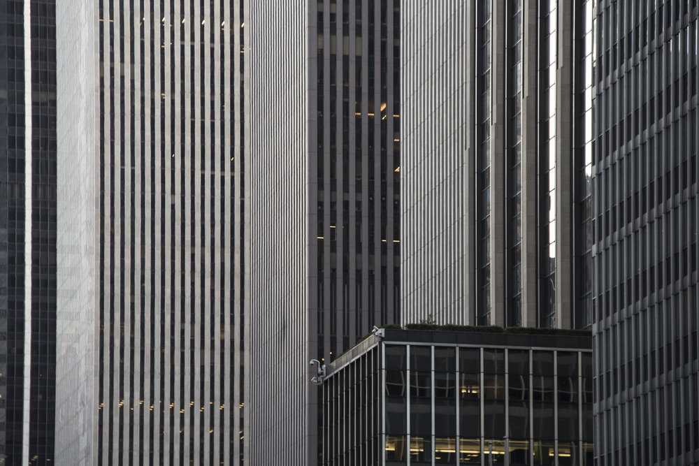 citylines.jpg