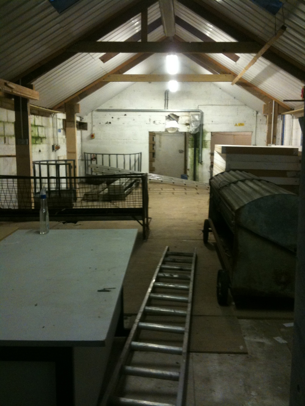 The old milking parlour before we renovated & moved in.