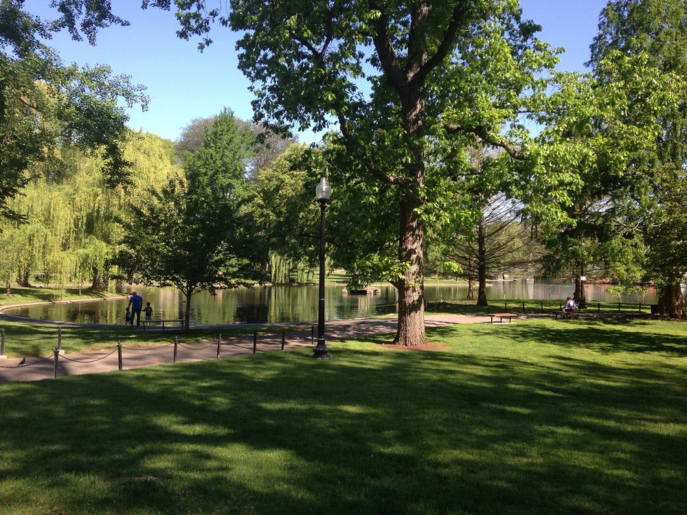 boston_park.jpg