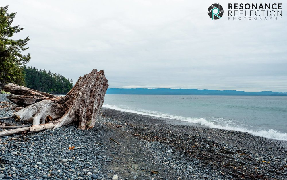 Location: French Beach. Vancouver Island, British Columbia, Canada