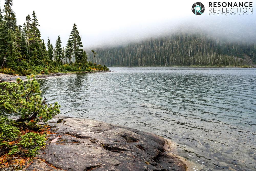 Location: Strathcona Provincial Park. Vancouver Island, British Columbia, Canada.