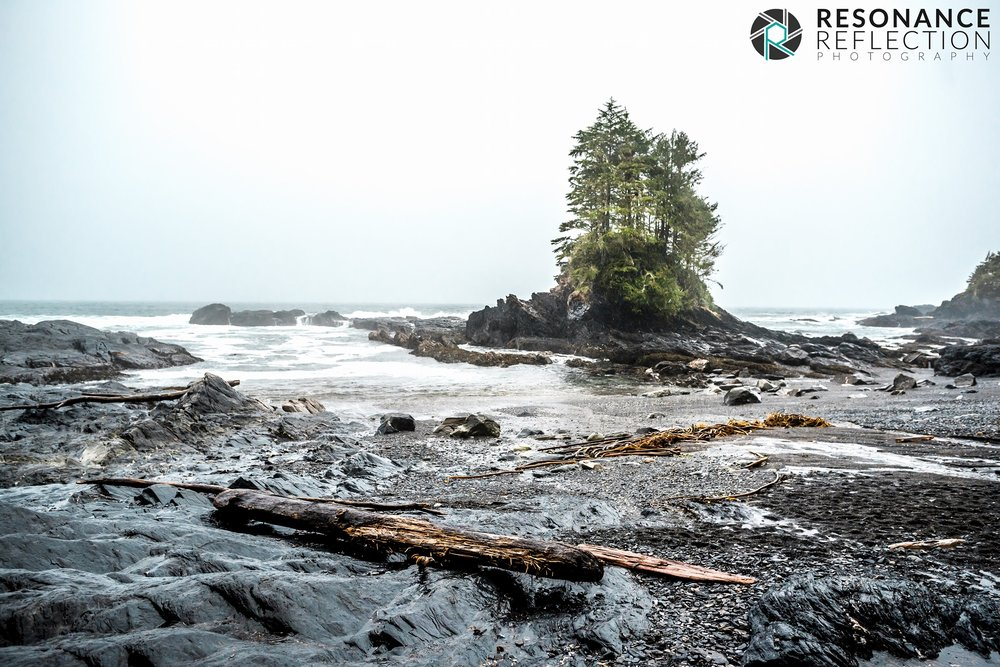 Location: Botanical Beach. Vancouver Island, British Columbia, Canada.