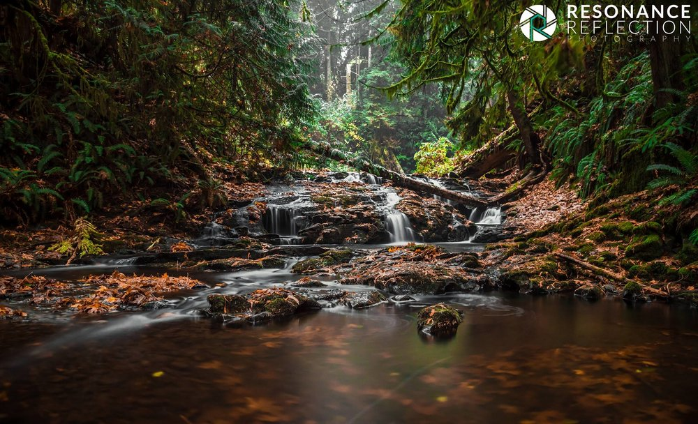 Location: Stocking Creek. Vancouver Island, British Columbia, Canada.