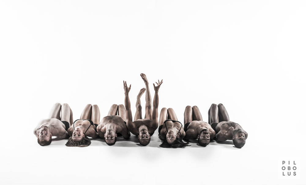 Pilobolus- Photo Credit Robert Whitman - source: https://www.bricartsmedia.org/events-performances/bric-celebrate-brooklyn-festival/pilobolus