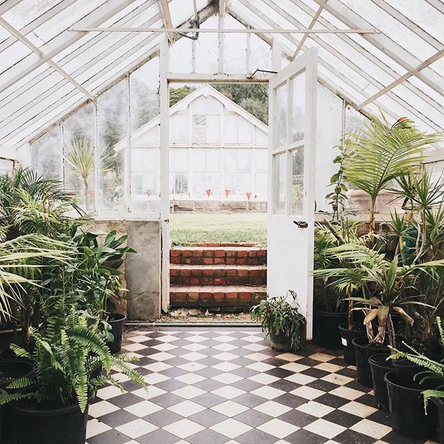 Discovered this beaut glasshouse today whilst strolling through the Werribee Mansion park 🙌🏻🍃 What a dream space . . . . . #werribee #werribeemansion #werribeepark #glasshouse #beautiful #greenery #plants #park #garden #nature #succulents