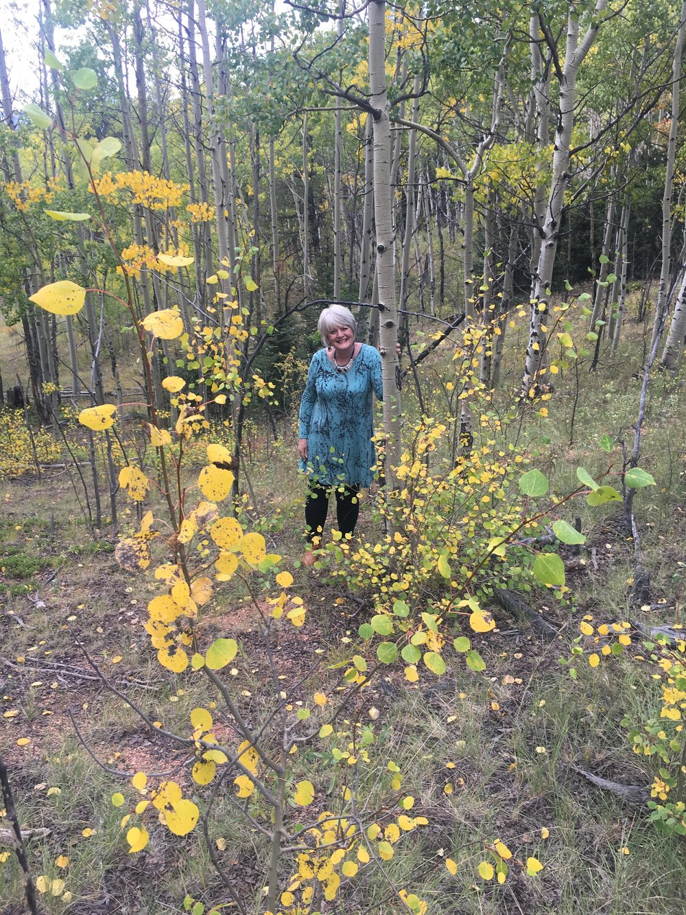 "Hiking in my Colorado mountains. Joel was with me and he said, ""Mom, look up!"" And so he caught me amidst these golden beauties."