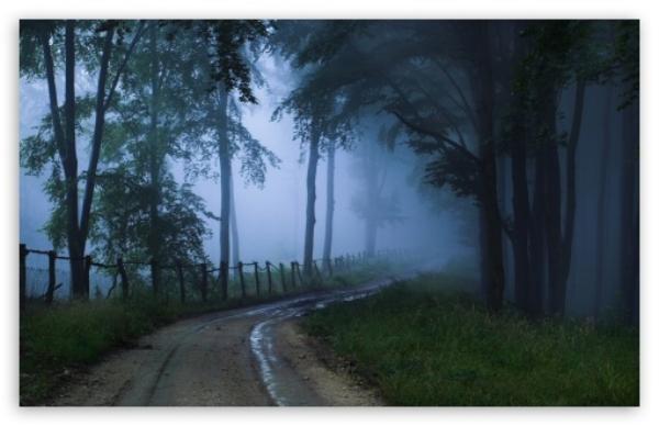 misty_road_2-t2.jpg