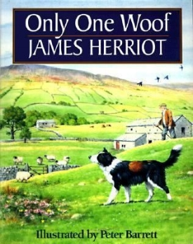 179eb7f570d35b14a6f62c9ac8e9e24a--james-herriot-book-illustrations.jpg