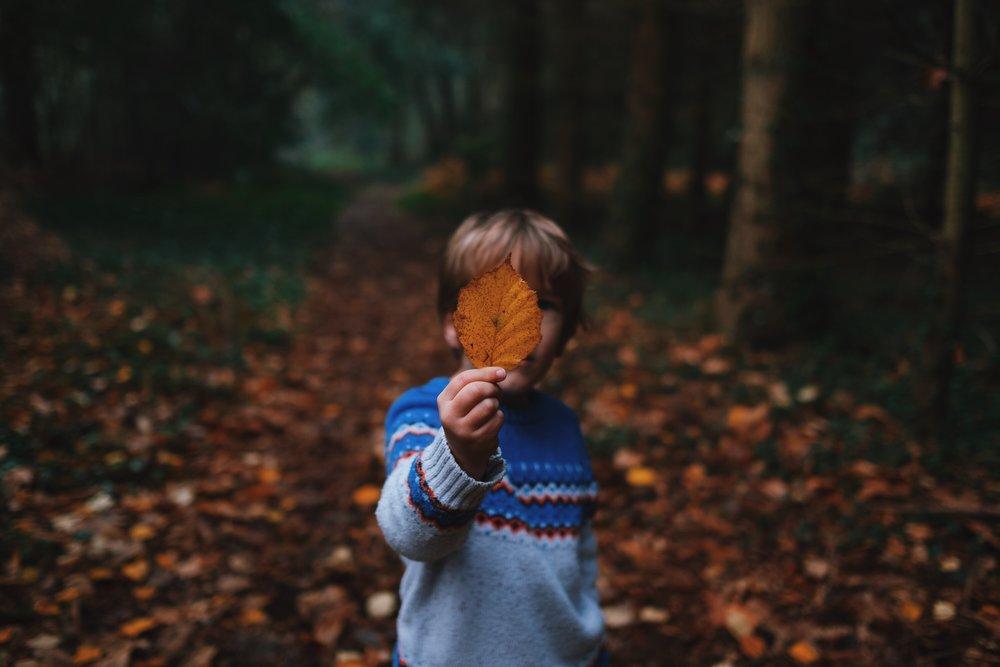 boy leaf .jpg
