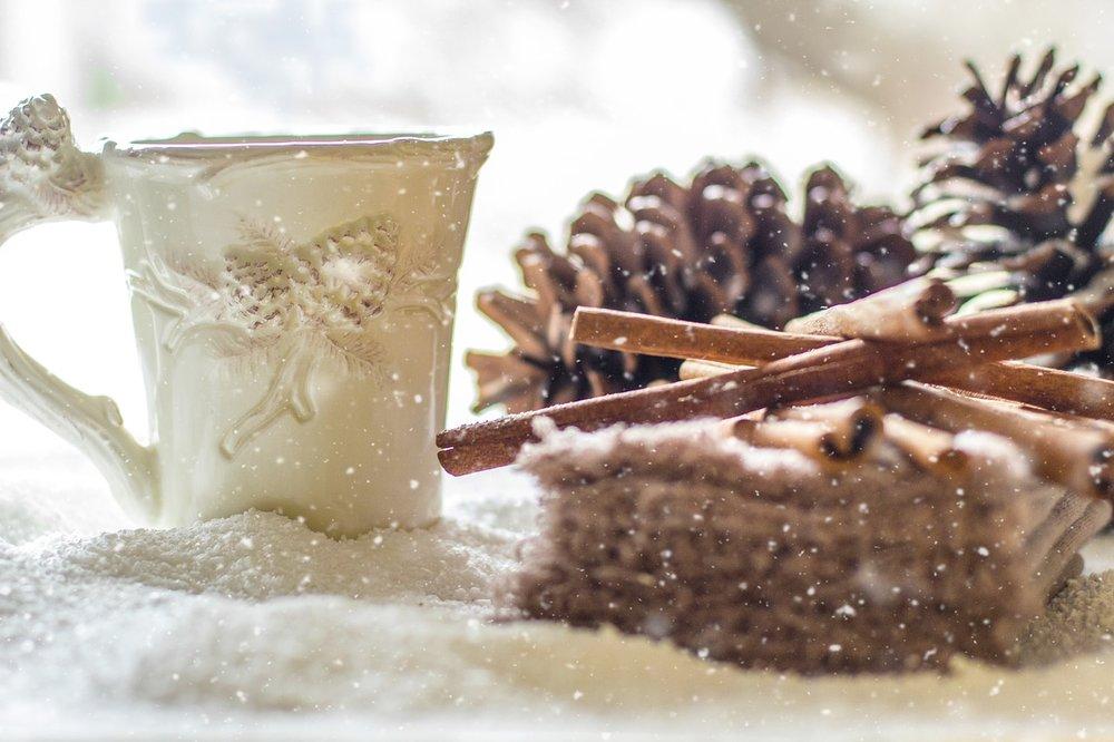 pine-cones-2110283_1280.jpg