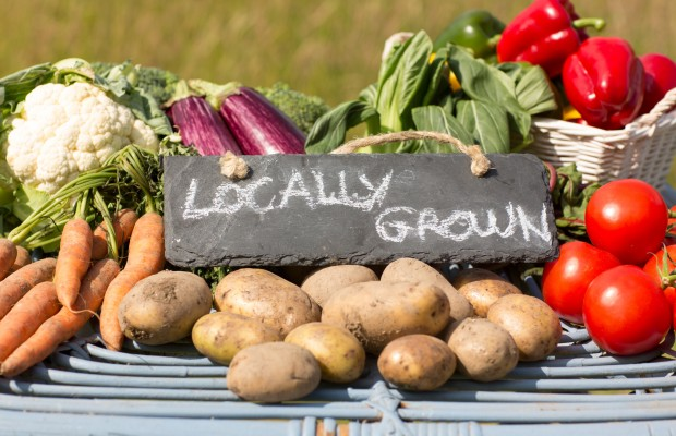 "Farmers Market vegetables with a sign stating ""locally grown"""