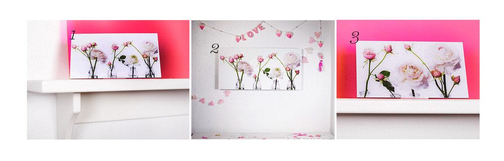 pink roses ondrea barbe.jpg