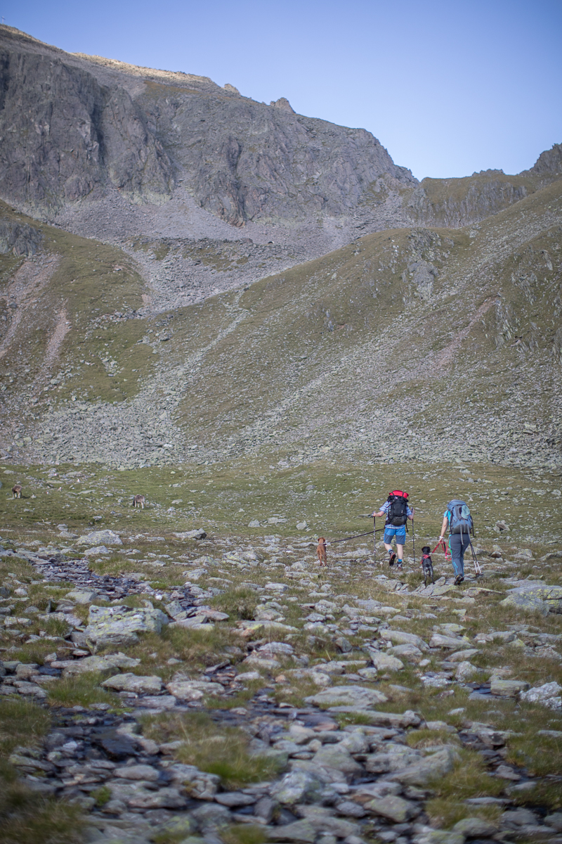 "Crossing the ""wet zone"".  Dania and Zappa were spotting the marmots on the right."