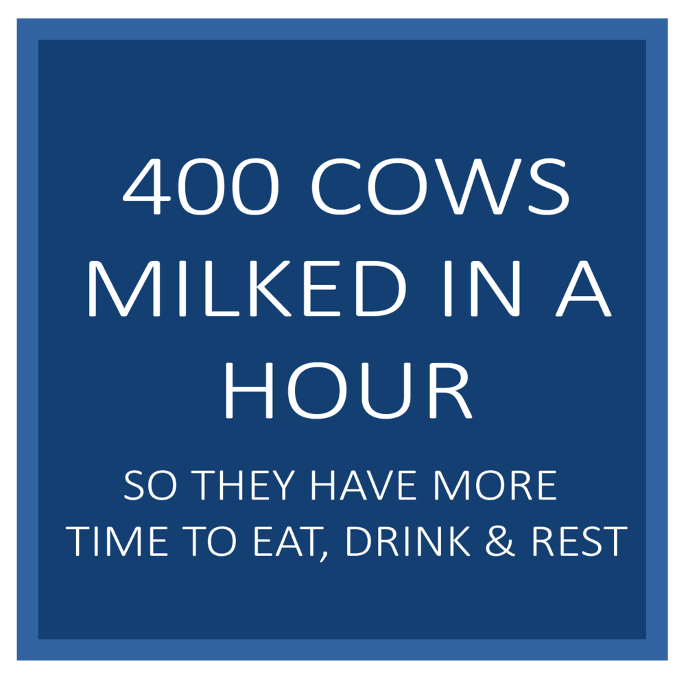 400milked.png