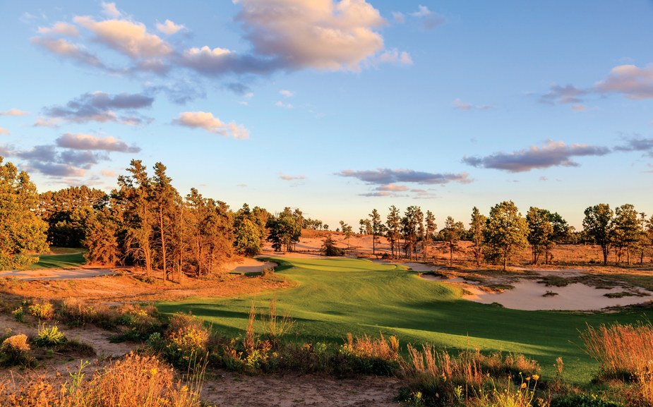 Jack pines and sand prairie surround the 200-yard 14th hole at Sand Valley (photo by Ryan Farrow)