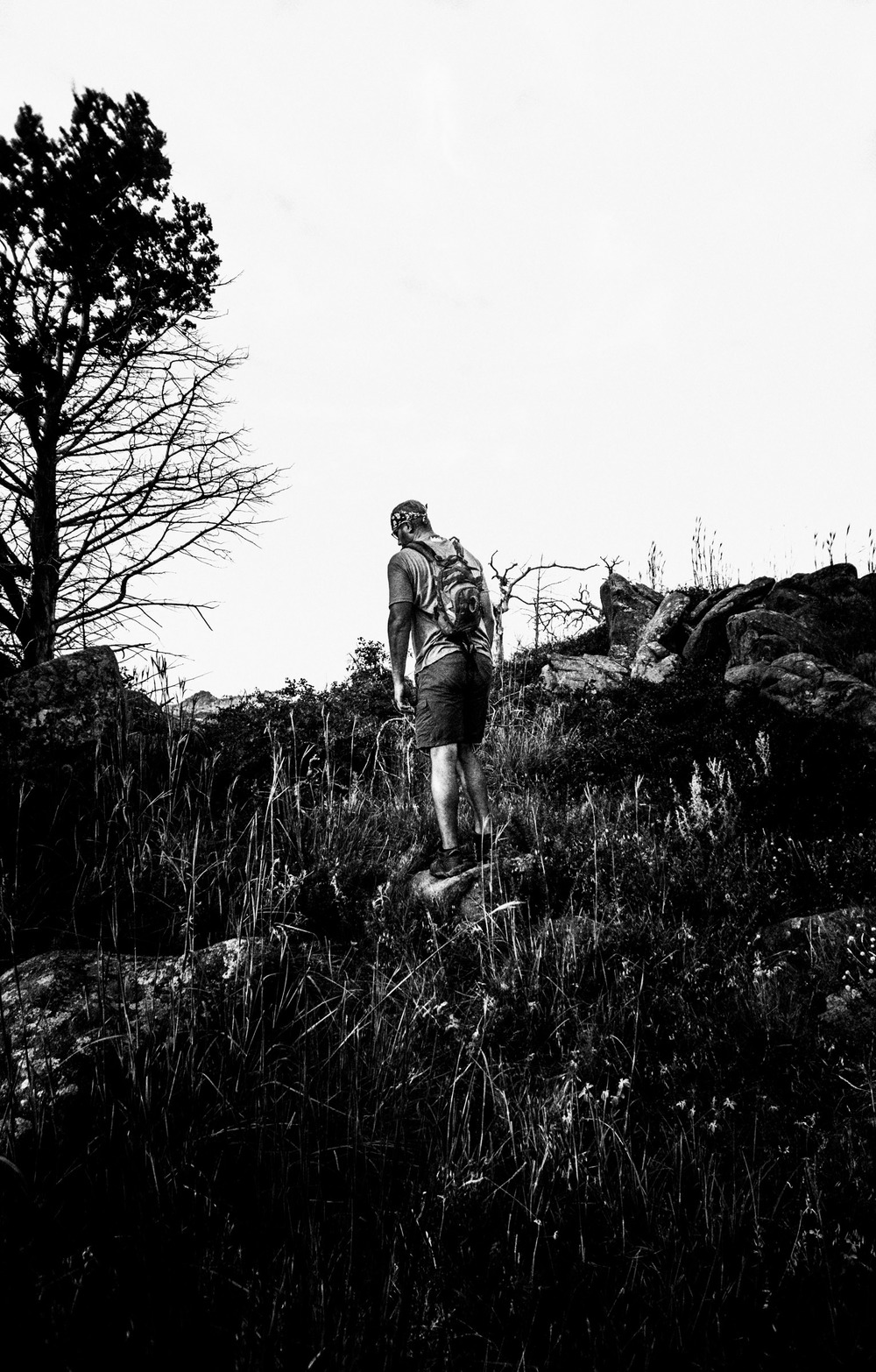 Mount Mitchell B&W 08-07-16 (2 of 35).jpg