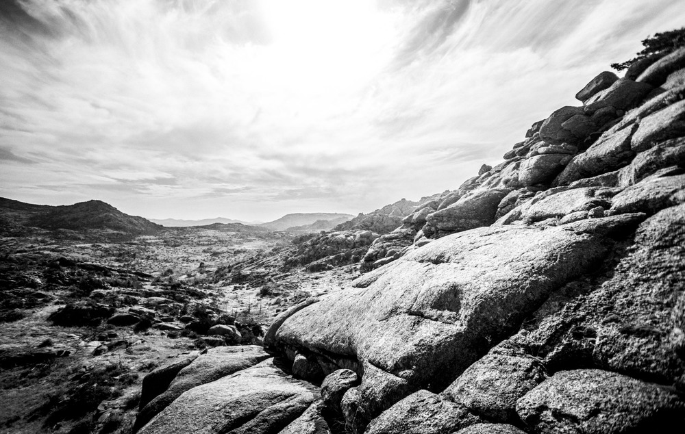 Mount Mitchell B&W 08-07-16 (16 of 35).jpg