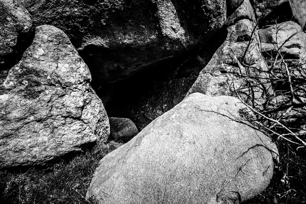 Mount Mitchell B&W 08-07-16 (24 of 35).jpg
