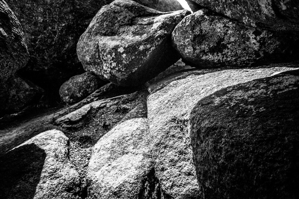 Mount Mitchell B&W 08-07-16 (28 of 35).jpg