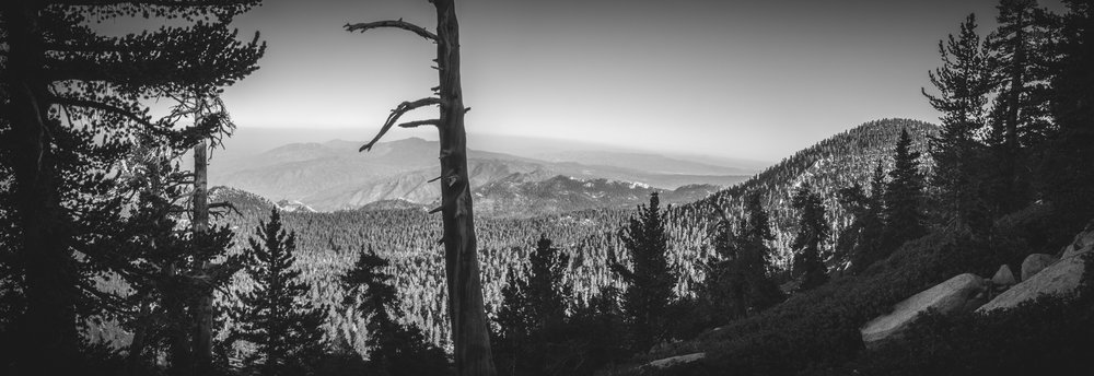 2017-07-02 San Jacinto Peak B (20 of 30).jpg