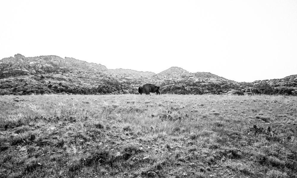 2017-06-25 Mount Lincoln B (1 of 20).jpg