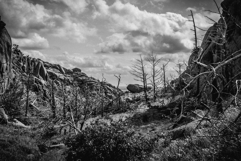 A nine-mile solo hike -