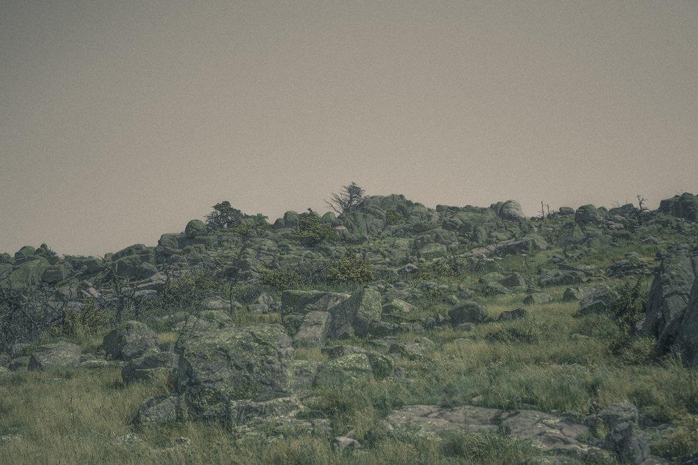 2017-08-21 Mount Sheridan ECLIPSE C (3 of 15).jpg