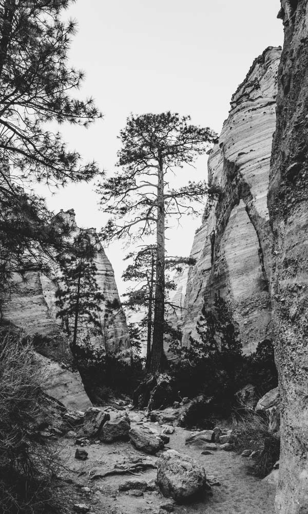 newmexico-tentrocks-womenwhohike-toddeclark-nature-adventure-mountains-outdoors-hike-wanderlust-naturelovers-love-view-outdoor-neverstopexploring-travel-wilderness-optoutside-keepitwild-2.jpg